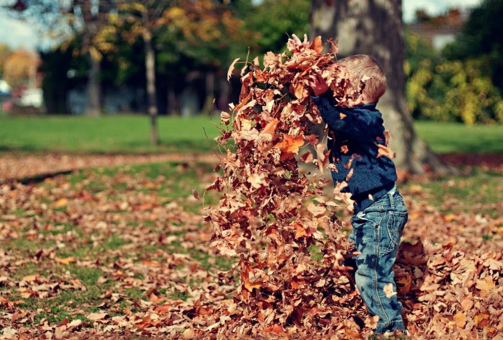 međunarodna otmica deteta iz Srbije