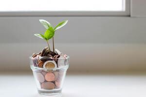 subvencije za start up, ulaganje u startup